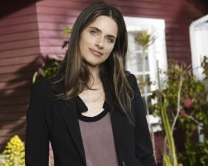 Amanda Peet The Good Wife