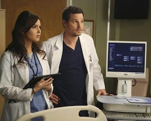CAMILLA LUDDINGTON JUSTIN CHAMBERS Grey's Anatomy Season 9