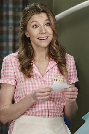 Grey's Anatomy Season 9 Recap Sarah Chalke