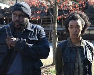 Walking Dead Season 4 Cast