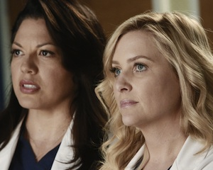Grey's Anatomy Season 9 Recap