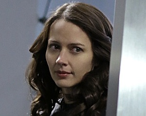 Person of Interest Amy Acker Regular