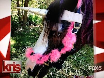 Kardashian unicorn