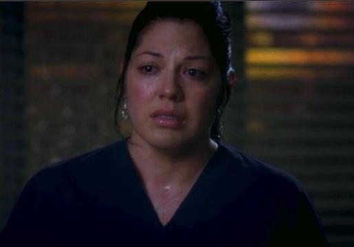 Grey's Anatomy Season 10 Calzona