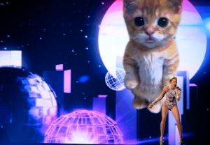 AMAs Miley Cyrus Cat