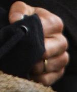 renard's ring