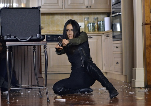 Sedia superare adattamento  Nikita' Series Finale: Michael and Nikita Elope, Amanda Captured — Recap |  TVLine