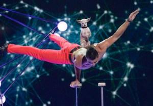America's Got Talent Ratings Low