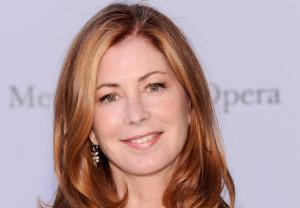 Dana Delany The Comedians