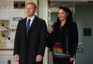 Grey's Anatomy Season 11 Recap