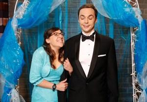 The Big Bang Theory Season 8 Sheldon Amy