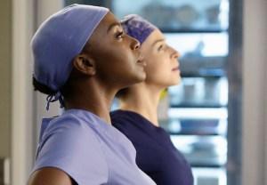 Grey's Anatomy Amelia Stephanie Spoilers