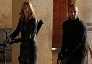 Agents of SHIELD Spinoff Palicki Blood