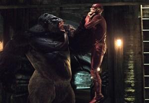 The Flash Versus Grodd