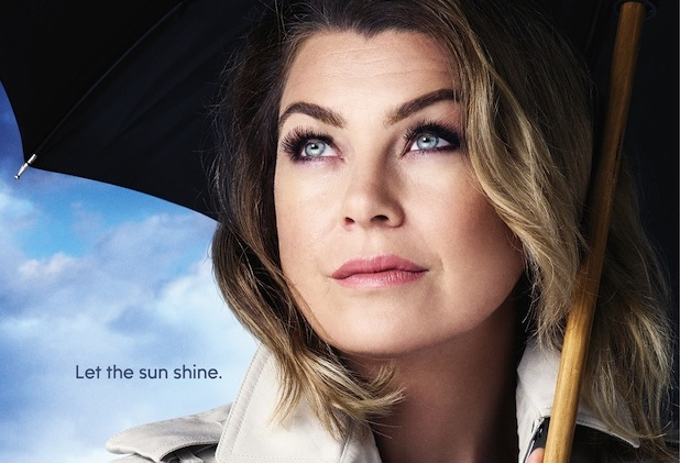 Grey's Anatomy Season 12 Poster