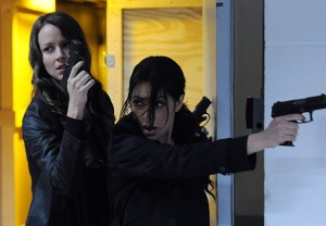 Person of Interest Root Shaw LGBT