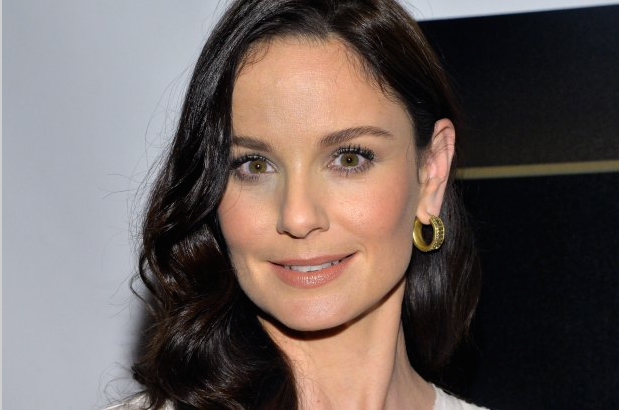 Sarah Wayne Callies Returns to Prison Break