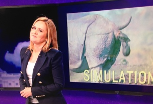 Samantha Bee Midterm elections rhinoceros