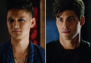 Shadowhunters Magnus Alec Wedding