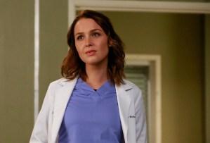 Grey's Anatomy Season 12 Izzie Alex Poll