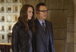 person-of-interest-root-finch