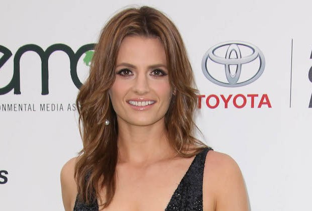Stana Katic Return TV