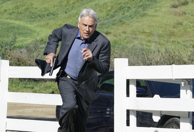 NCIS Ratings Season 14