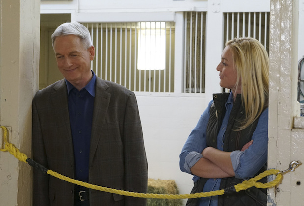 NCIS Season 14 Ratings