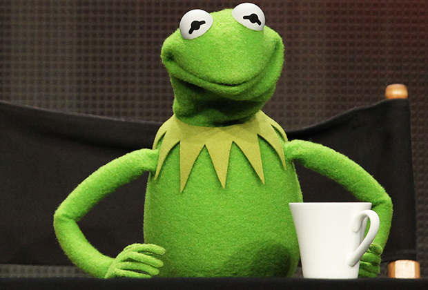 Kermit Actor Fired