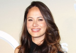 Moon Bloodgood Code Black Season 3
