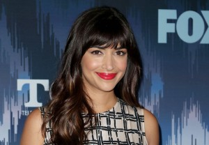 Hannah Simone The Greatest American Hero