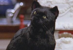 Sabrina Reboot Salem