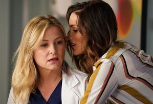 Grey's Anatomy Season 15 Arizona Dies Leaves Jessica Capshaw