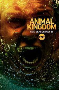 animal kingdom season 3 video baz missing