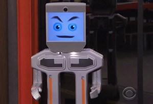 Big Brother Robot