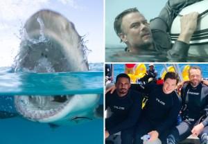 Shark Week 2019 TV Schedule