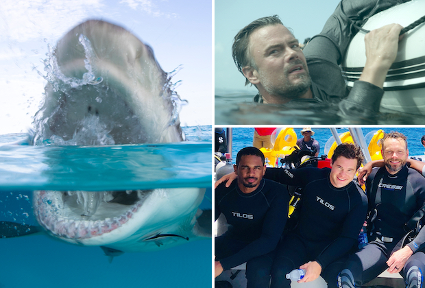 Shark Week 2019 TV Schedule
