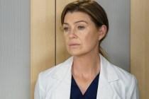Grey's Anatomy Halts Production on Season 16 Due to Coronavirus Crisis