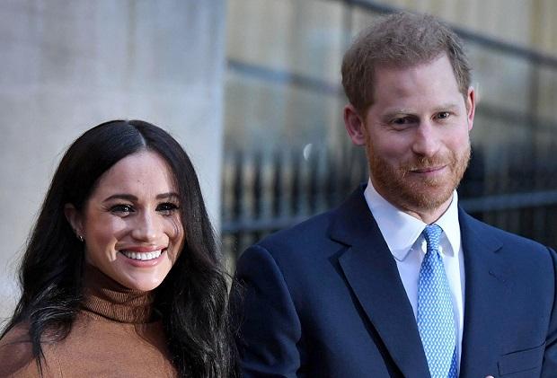 Prince Harry Meghan Markle Special Fox