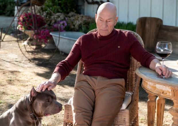 Star Trek Picard Patrick Stewart Dog Number One