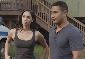 Hawaii Five-0 Cancelled Season 11 Spoilers