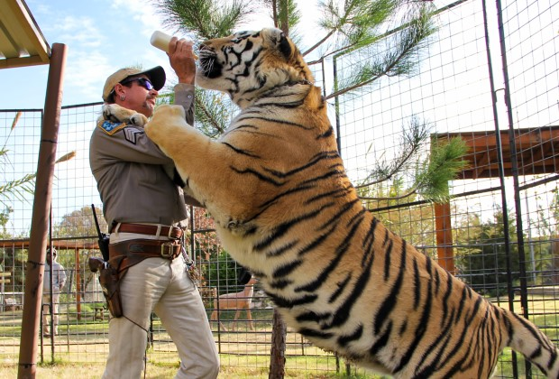 Tiger King New Episode Joe Exotic