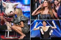America's Got Talent: Sofia Vergara Makes Big Debut in Season 15 Premiere — Who Got the First Golden Buzzer?