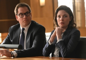 Bull Cancelled Renewed