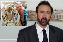 Nicolas Cage to Play Joe Exotic in Scripted Series About Tiger King Star