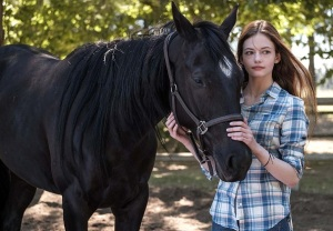 Black Beauty Disney+
