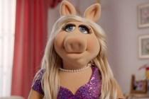 Muppets Now on Disney+: Grade It!