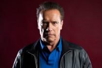 Arnold Schwarzenegger to Lead Spy Drama From Scorpion Creator