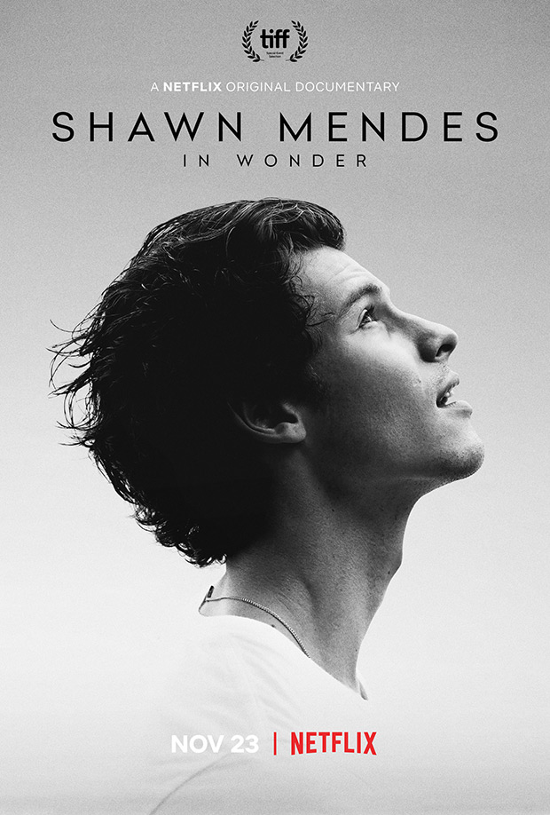 Shawn Mendes Netflix Documentary