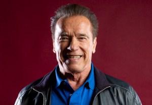 Arnold Schwarzenegger Netflix Spy Drama